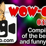 Смешные моменты, шутки и приколы WOW-club 0333